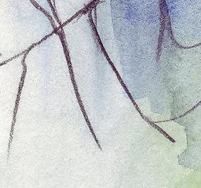 arbre-carre.jpg